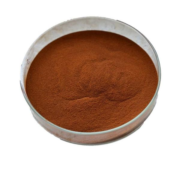 High Organic Concentrated Potassium Humate Flake Humic Acid Powder 55%-70%